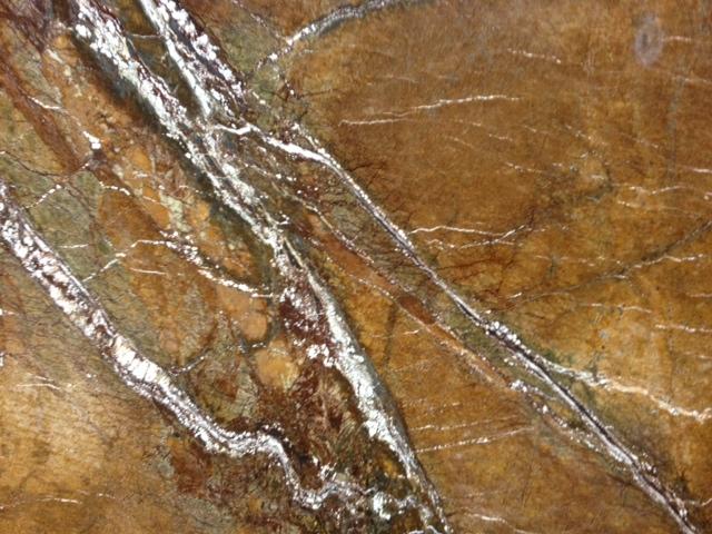 Webforest Brown Polished<br>Lot # 006